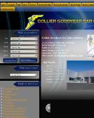 Collier Automotive Group Inc