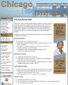 Chicago+Accountant+%26+Payroll+-+Charles+Schulze+CPA Website