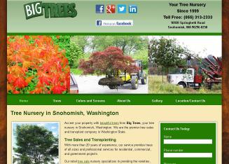 Big+Trees+Inc Website