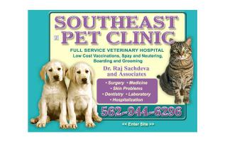 Southeast Pet Clinic