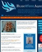 Blue+Wave+Aquatics+-+Federal+Way Website
