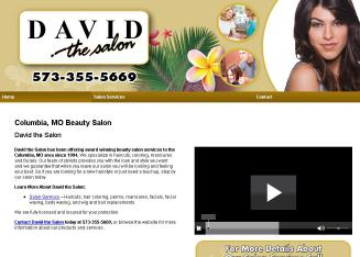 David+The+Salon Website
