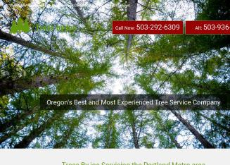 Trees By Joe - Affordable & fast since 1977.