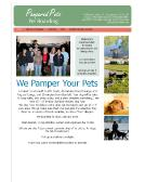 Pampered+Pets Website