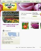 Meier+Flowerland+%26+Greenhouse Website