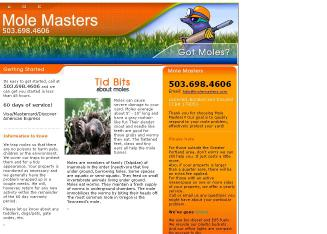 Mole+Masters Website