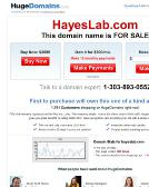 Hayes+Testing+Laboratory+Inc Website