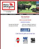 auctioneers amp  auction houses