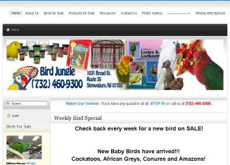 Bird+Jungle+-+Hundreds+Of+Birds+To+Choose+From Website